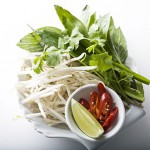 Gallery-Pho-Accompaniments